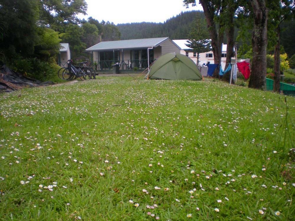 кемпинг в Новой Зеландии
