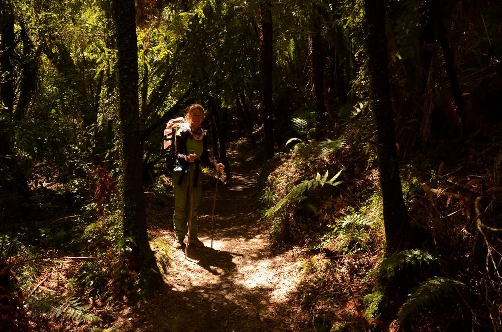 Абель Тасман Национальный парк