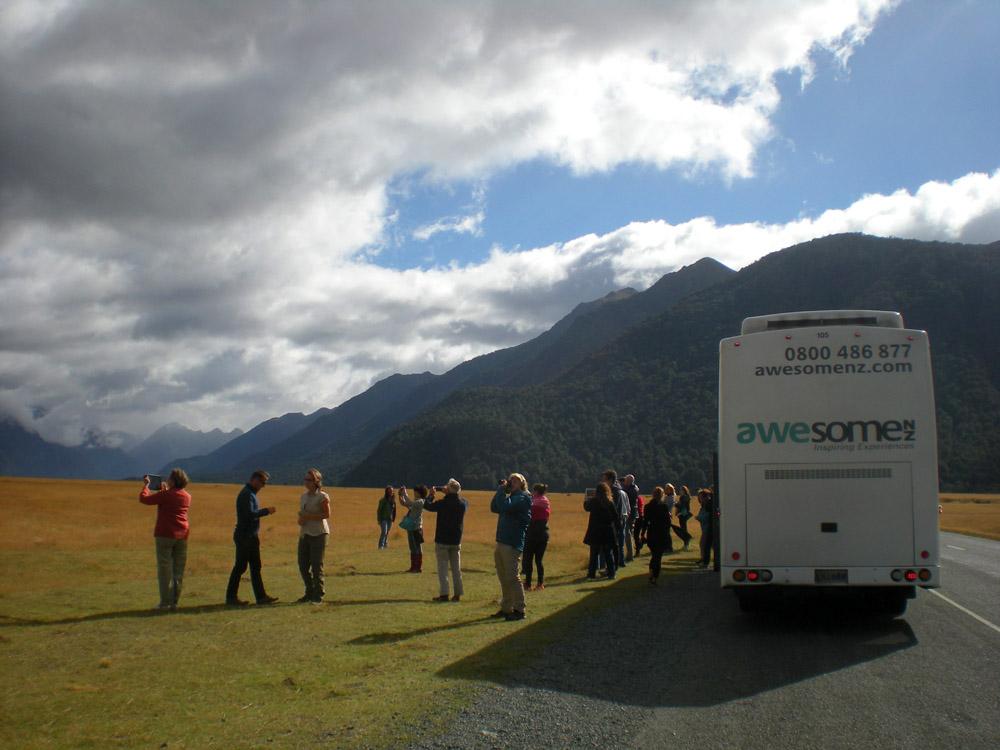 автобус в Новой Зеландии